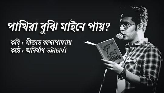 Pakhira Bujhi Maine Pay Poem Song Lyrics (পাখিরা বুঝি মাইনে পায়) Anirban