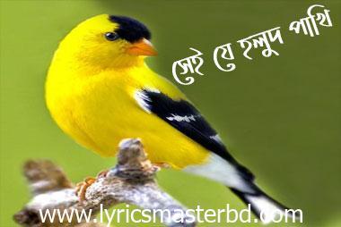 Sei Je Holud Pakhi Lyrics (সেই যে হলুদ পাখি) – Cactus